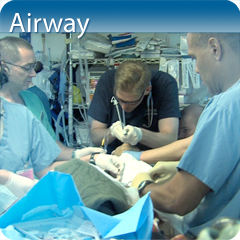 Online Ultrasound Course for Airway: Core Clinical Module