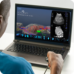 Ultrasound Simulator for Adrenal Glands: Anatomy & Physiology Module
