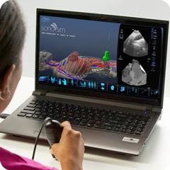 Ультразвуковой тренажер женского таза: модуль анатомии и физиологии