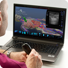 Ultrasound Simulator for Lungs: Anatomy & Physiology Module