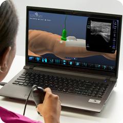 Ультразвуковой тренажер для тазобедренного сустава: модуль анатомии и физиологии