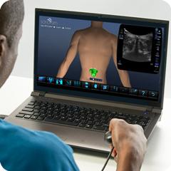 Ultrasound Simulator for Spine: Anatomy & Physiology Module