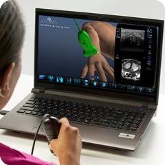 Simulatore di ultrasuoni per polso: modulo anatomia e fisiologia