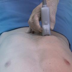Кишечный / желчный: основной клинический модуль
