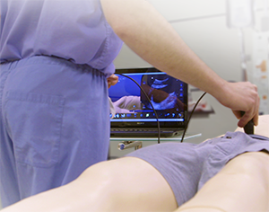 New Laerdal-SonoSim Joint Product Takes Center Stage at IMSH 2015