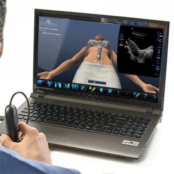 Ultraschallsimulator für GYN-Ultraschall bei nicht-schwangeren normalen Gebärmutter: Advanced Clinical Module