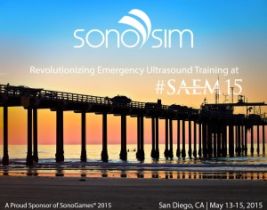 SonoSim at SAEM 2015