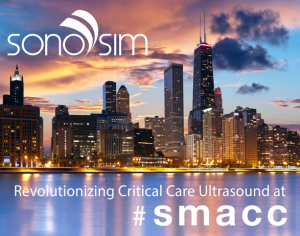 Great Seeing You at SMACC 2015