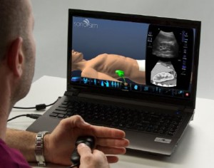 Sonography Simulators: Use and Opportunities in CAAHEP-Accredited Programs